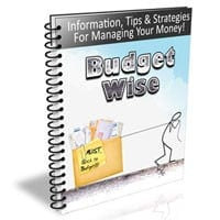 Budget Wise Newsletter 2