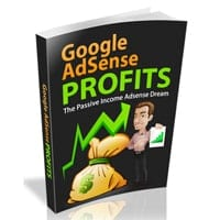 Google Adsense Profits II 2
