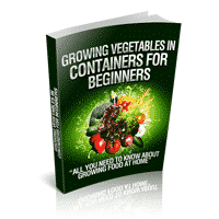 Growing Vegetables In Containers For Beginners 1