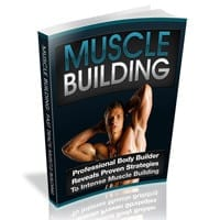 Muscle Building 2