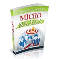 The Beginner's Guide to Micro Niches 1