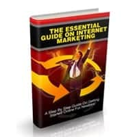 The Essential Guide on Internet Marketing 1