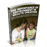 The Importance Of Environment In Wealth Creation 1