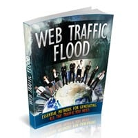 Web Traffic Flood 2