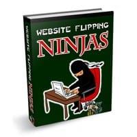 Website Flipping Ninjas 1
