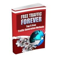Free Traffic Forever 2