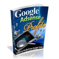 Google AdSense Profit 1