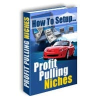 How To Setup Profit Pulling Niches 2