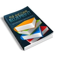 PLR Income Blueprint 1