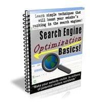 Search Engine Optimization Basics 1
