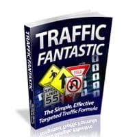 Traffic Fantastic 1