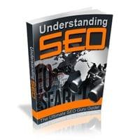 Understanding SEO 2