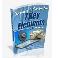 7 Key Elements To Online Success 1