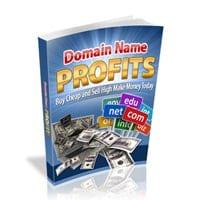 Domain Name Profits 2