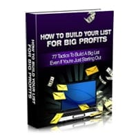How To Build Your List For Big Profits 2