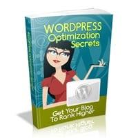 Wordpress Optimization Secrets 2