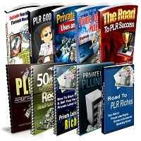 PLR Niche & Profits Reports