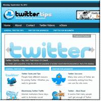 Twitter Niche Site 1