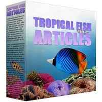 Tropical Fish PLR Content
