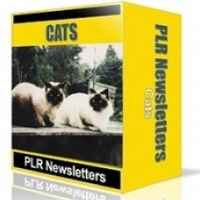 Cats Niche Newsletters
