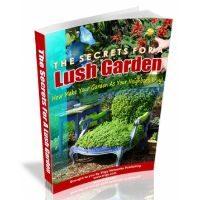 The Secrets For A Lush Garden