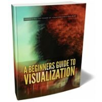 A Beginners Guide To Visualization